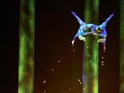 """En esta foto del 28 de noviembre de 2008, Sarah Guilliot-Guyard (izquierda), y Sami Tiaumassi actúan durante la presentación de """"Pueblo del bosque"""", en el MGM Grand Hotel en Las Vegas. Guilliot-Guyard murió en junio de 2013 después de caer desde casi 30 metros de altura durante una actuación."""