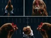Curiosa publicidad de Mercedes-Benz revoluciona el gallinero.